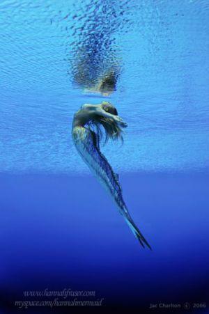 Mermaids that make a real-life splash!