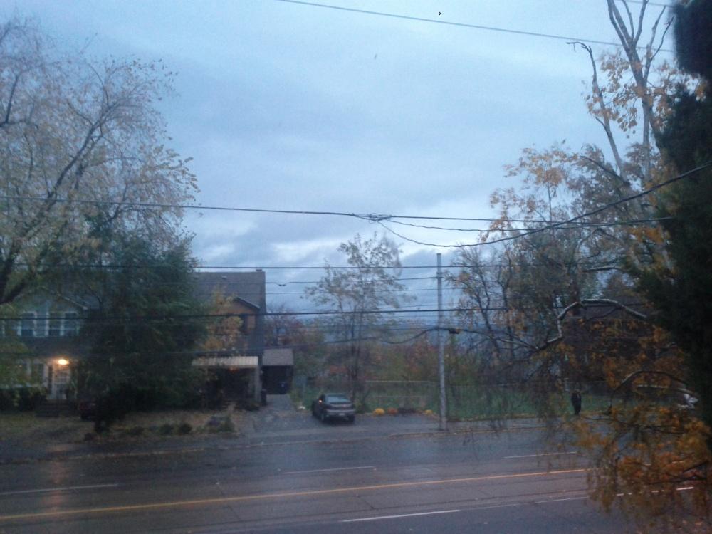 Hurricane Sandy affecting Etobicoke (1/2)